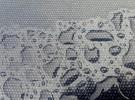 Dews on Grey