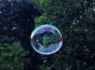 Bubble afloat
