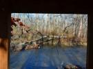 frame in fall