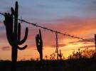 Desert in Chains