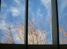 Sky...light