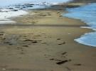 Snow-Sand-Sea