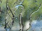 Moody Rain