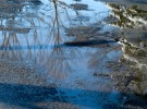 Reflections on a winters day