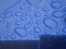 Wet Blue
