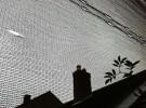 roof through net